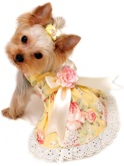 Designer Couture Custom Made Dog Clothing