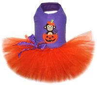 Monkey in a Pumpkin Tutu