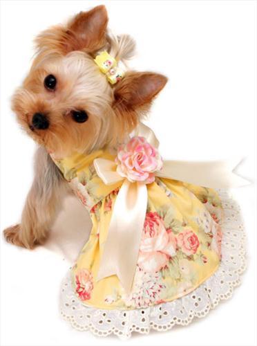 Yellow Rose Garden Dress
