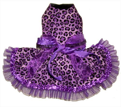 Sassy Leopard Print Dress